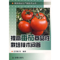 提高番茄商品性栽培技术问答