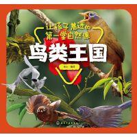 让孩子着迷的第一堂自然课-鸟类王国