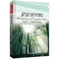 萨提亚冥想-内在和谐、人际和睦与世界和平贝曼主编万千心理保健心理心理健康心理治疗书籍