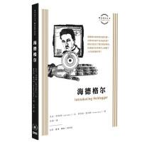 图画通识丛书:海德格尔