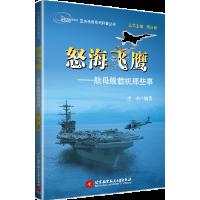 空天传奇系列科普丛书:怒海飞鹰――航母舰载机那些事