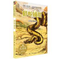 蟒蛇捕猎,沈石溪 等 著 著作,湖南少年儿童出版社,9787556224807【正版保证 放心购】