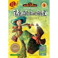 儿童英语自然拼读故事绘本(3)钻进裤子里的蚂蚁