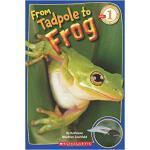 【预订】From Tadpole to Frog 9780545273374