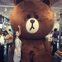 巨型超大号布朗熊公仔2米大熊毛绒玩具3.4米布娃娃送女友生日礼物 深棕色代写祝福贺卡