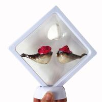愤怒的 愤怒的小鸟鱼标本圭鱼鱼皮玩具 旅游纪念品儿童玩具礼品 中单价