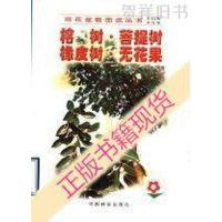 【二手旧书9成新】榕树・菩提树・橡皮树・无花果_黄茶英,刘青林编著