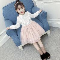 儿童连衣裙 女童时尚裙子2019秋季童装女孩连衣裙新款韩版儿童裙子中大童蕾丝公主裙