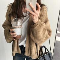 2019新款韩国时尚女装秋冬新款毛衣外套chic港味宽松型袖短款羊毛针织衫 均码