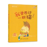 校园星阅读第一辑 我曾养过一群猫(北大中文系才女作家严优、人与猫的亲密情感、爱意满满的童年)
