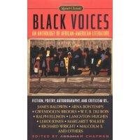 黑人的声音 英文原版小说 英文版 英文原版书 Black Voices Abraham Chapman Signet