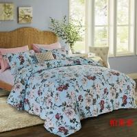 印花水洗绗缝被 床盖三件套夹丝棉床单棉床罩空调被s 浅湖蓝 帕莱索 225x245cm+两个枕套