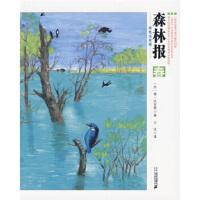 森林报(春 彩色注音版),[苏] 维・比安基,王汶,二十一世纪出版社,9787539153261