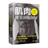 肌肉健美训练图解――适合中国人体质的肌肉训练书