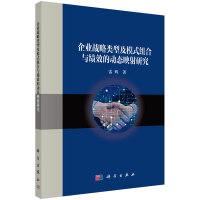 企业战略类型及模式组合与绩效的动态映射研究