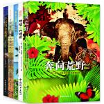 莫波格经典成长小说系列 全5册