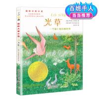 国际大奖小说――光草