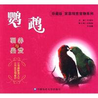 鹦鹉驯养与鉴赏 王增年 中国农业大学出版社 9787811176650
