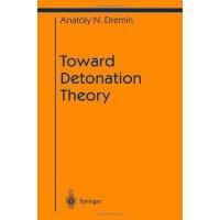 【预订】Toward Detonation Theory 9781461268192