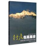 行走在高海拔--高原旅行探险手册,宋萍,刘勇,韩海军,四川科技出版社,9787536488199【正版图书 品质保证】