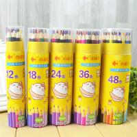 小鱼儿 3101彩色铅笔大中小学生男女生儿童幼儿学习办公美术涂色绘画文具用品桶装绘画笔秘密花园彩铅笔12色当当自营