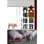 大棚高效养猪技术