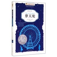 摩天轮(美绘版)/百年国际大奖小说