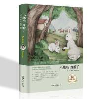 经典名著小战马 红脖子(英) 西顿编著 汕头大学出版社 00
