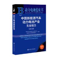动力电池蓝皮书:中国新能源汽车动力电池产业发展报告(2018),大连松下汽车能源有限公司;中国汽车技术研究中心有限,社