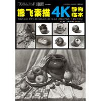 熊飞素描4K静物临本 熊飞 湖北美术出版社