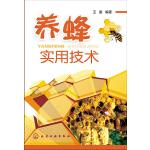 养蜂实用技术