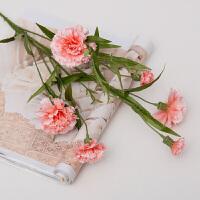 仿真花康乃馨花束花瓶插花塑料花装饰花客厅摆设教师节假花单支