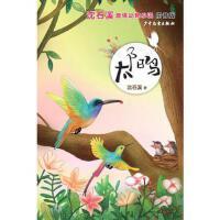 沈石溪激情动物小说太阳鸟,沈石溪,少年儿童出版社,9787558901058