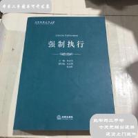 【二手旧书9成新】法官智库丛书:强制执行 /张永红 法律出版社