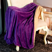双层加厚珊瑚绒毯子被套仿羊羔绒双人单人办公室午睡毯法兰绒小毛毯k