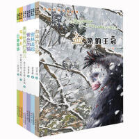动物小说名家系列(6册) 00紫色的猫 密林追踪 白象家族 血染的王冠 琴姆且 美丽世界的孤儿