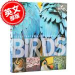 现货 英文原版 Encyclopedia of Birds 鸟类百科全书 DK精装全彩