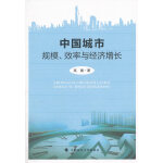 中国城市规模、效率与经济增长
