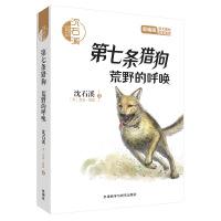 沈石溪和他喜欢的动物小说:第七条猎狗.荒野的呼唤(音频讲播版)