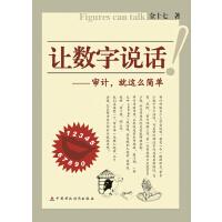 【正版二手书9成新左右】让数字说话―审计,就这么简单 金十七 中国财政经济出版社