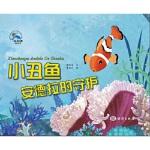 小丑鱼安德拉的守候,糖朵朵,海洋出版社,9787521001259