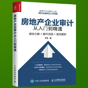 房地产企业审计从入门到精通 模块分解 操作流程 房地产企业审计人员岗位工作指南 房地产企业审计操作实务图书籍