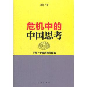 危机中的中国思考(下卷):中国未来何处去