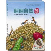 尚童自然之友:翻翻自然系列-《蚂蚁王国》(看得见的美好,看不见的奇妙!16开结实大卡板,96个小翻窗,小手翻翻,探索自