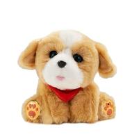 会说话的狗狗 会动的男女童毛绒玩具狗狗仿真泰迪智能对话机器狗 宝宝汪