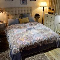 加厚保暖翡翠毛毯冬季双层毛毯单人双人盖毯午休空调毛毯 200cmx230cm 约7斤