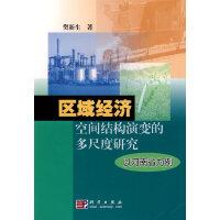 区域经济空间结构演变的多尺度研究――以河南省为例