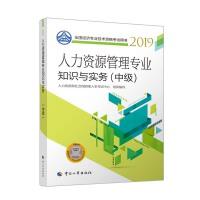 经济师中级2019 全国经济专业技术资格考试用书 人力资源管理专业知识与实务(中级)2019
