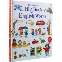 [现货]英文原版Big Book of English Words英语词汇图解大开本书 Usborne 纸板书 /Ma