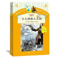 小人国和大人国,(英)斯威夫特,张健,人民文学出版社,9787020109241【正版图书 品质保证】